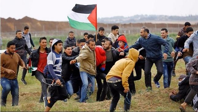خونِ فلسطین کی پکار!